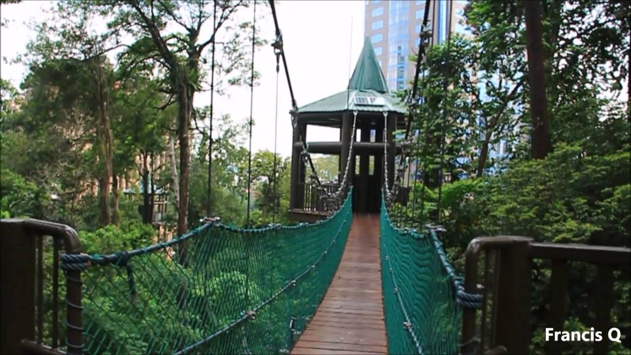 Canopy Walk KL Forest Ec Park at KL Tower Malaysia & Canopy Walk KL Forest Ec Park at KL Tower Malaysia - YouTube
