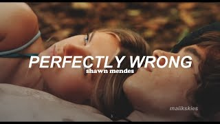 Shawn Mendes - Perfectly Wrong (Traducida al español)