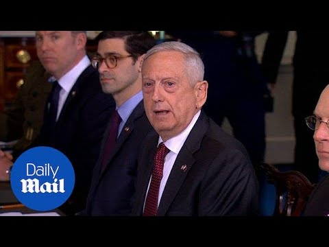 Mattis on action against Syria: 'I don't rule out anything' - Daily Mail