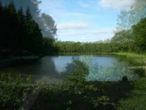 Carp Fishing Lakes For Sale In Normandy, France