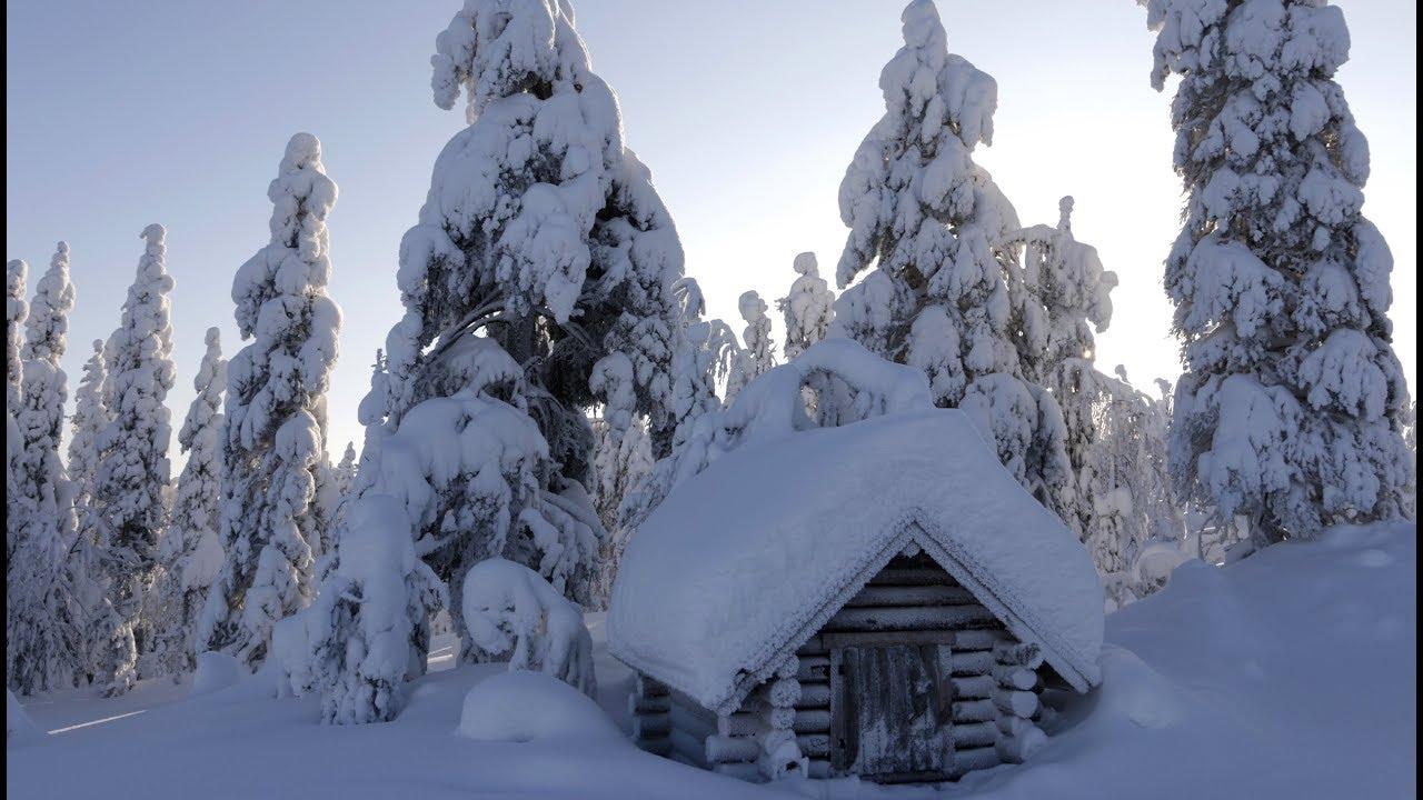 winter in lapland pello at arctic circle in finnish lapland