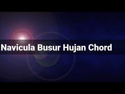 Chord Gitar Navicula (Busur Hujan)