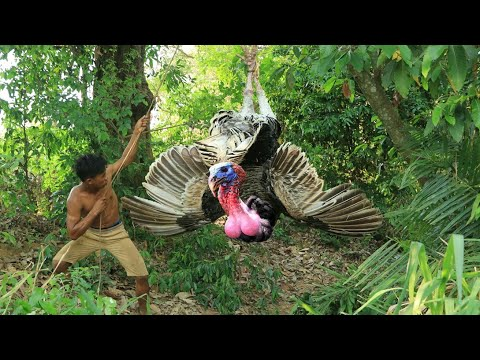 adventure in forest – use sound Hunting turkey – hungry men Eating turkey delicious