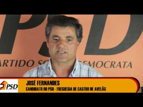 Candidato à Assembleia de Freguesia de Castro de Avelãs