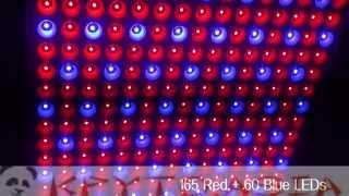 Лампа для растений 225 светодиодов 14Вт, синий + красный свет(https://kpyto.asia/svetovye-ustroystva/19109-lampa-dlja-rasteniy-225-svetodiodov-14vt-siniy-krasnyy-svet.html Панель для освещения прекрасно подходит ..., 2015-06-05T10:52:38.000Z)