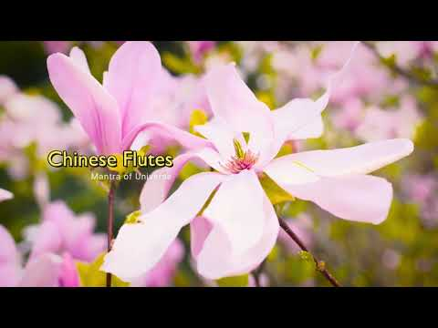 musik-seruling-china-untuk-mengurangi-stress,-media-meditasi,-berdoa,-penyembuhan,-tidur,-spa