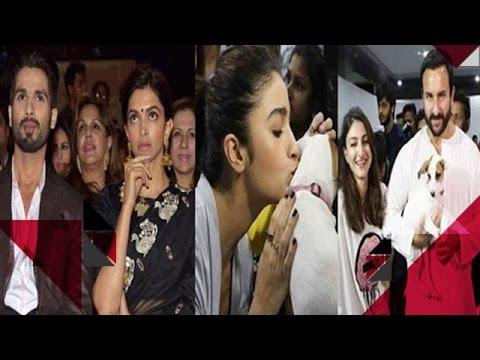 Shahid Kapoor INSECURE Of Deepika | Alia, Saif & Soha Help Animals To Find There Home