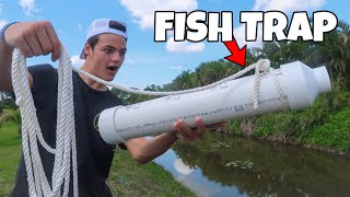 ULTIMATE FISH TRAP CATCHES LIVE FEEDER FISH!!!
