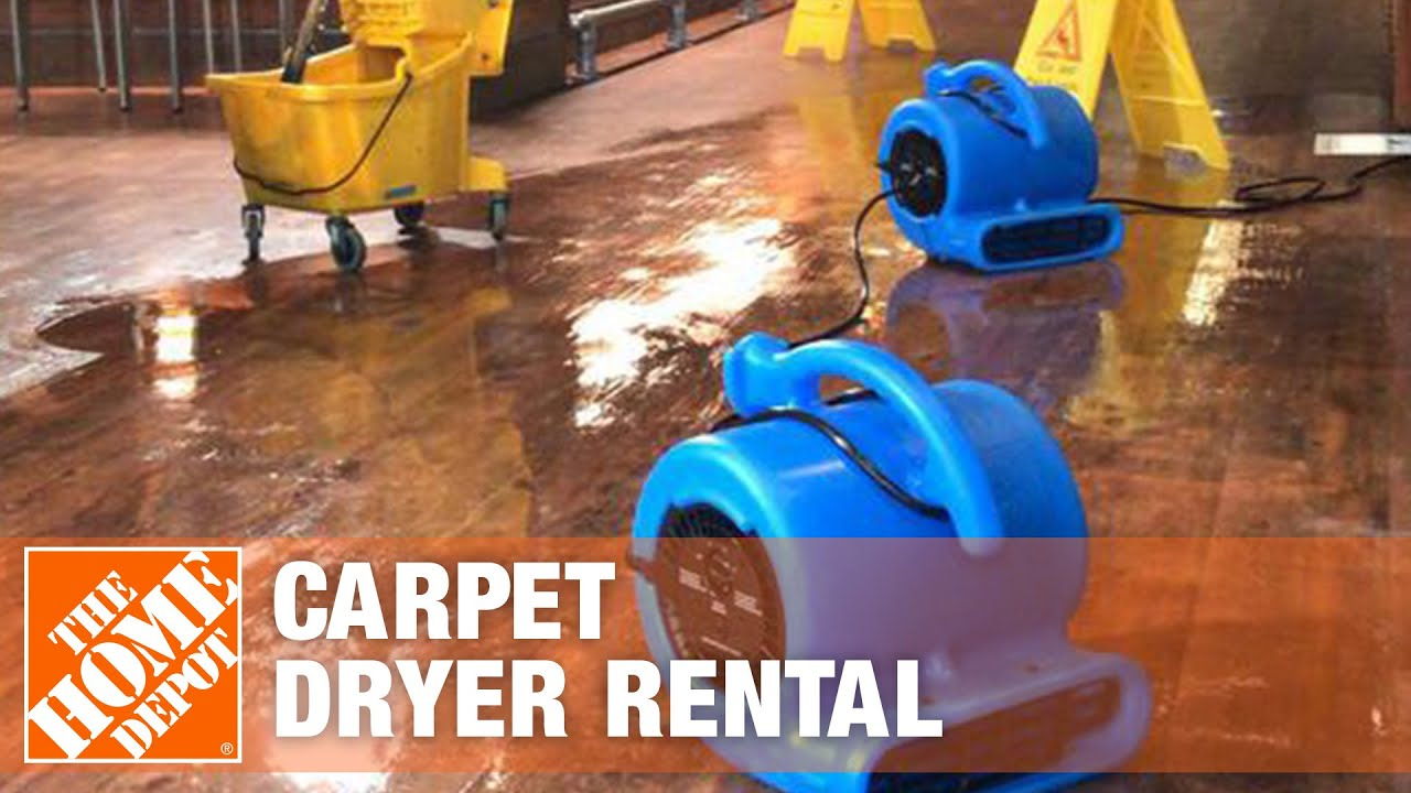 carpet dryer rental the home depot