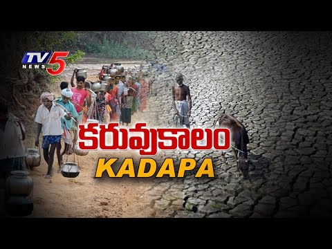 TV5 Ground Report on Drought Hit Villages in Kadapa | Drinking Water Scarcity | TV5 News