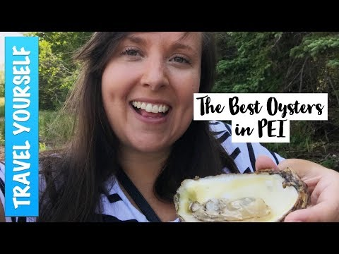 The Best Oysters In Prince Edward Island, Canada