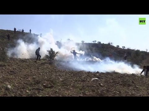 Palestinian protesters hurl stones at Israeli troops in West Bank