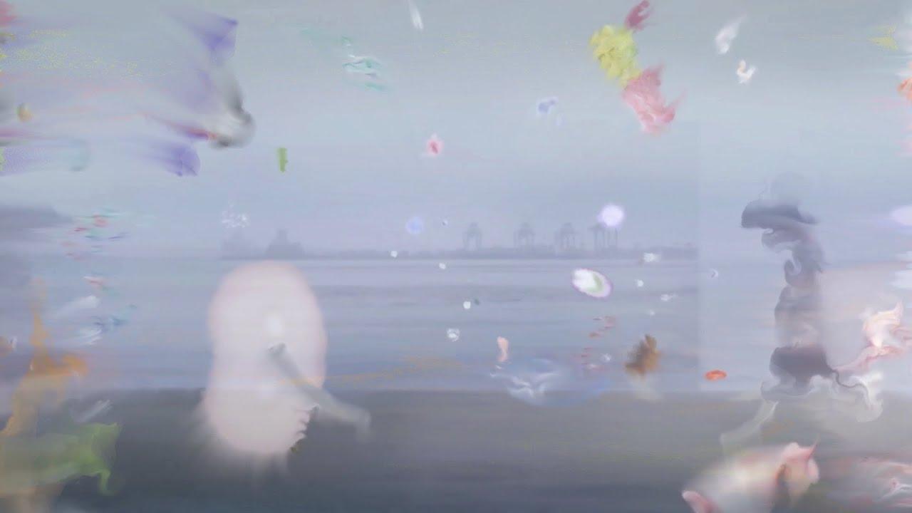 長谷川白紙 - シー・チェンジ  (Official Music Video)