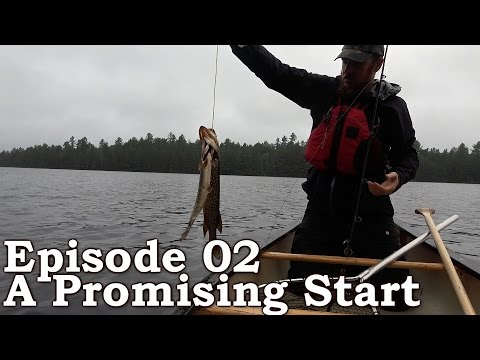 Survival Tactics | The Wilderness Living Challenge 2016 S01E02 - A PROMISING START