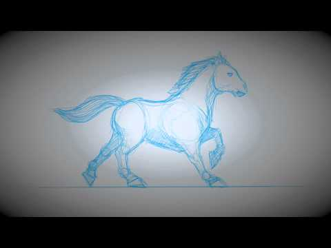 Animation Studies: Sketchbook Pro 7 / Cintiq Companion