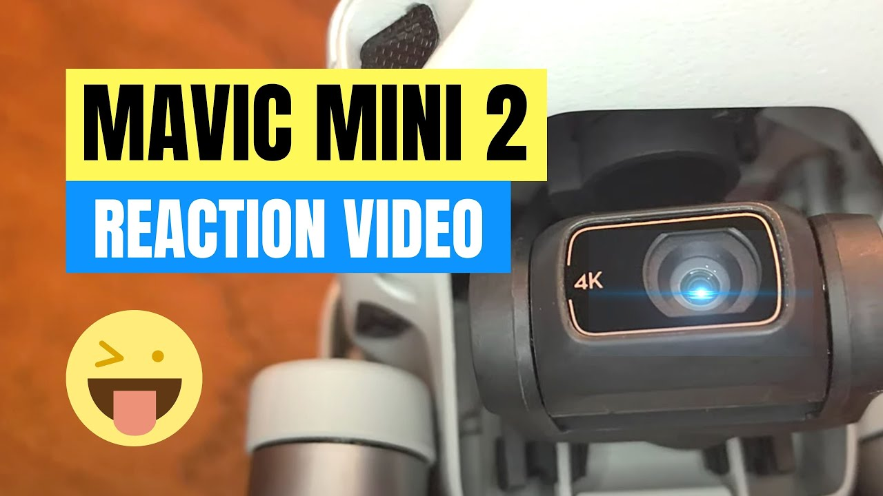 Mavic Mini 2 Unboxing and Specs Confirmed 😀