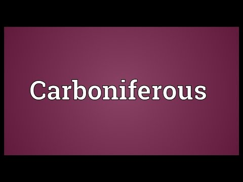 Carboniferous Meaning