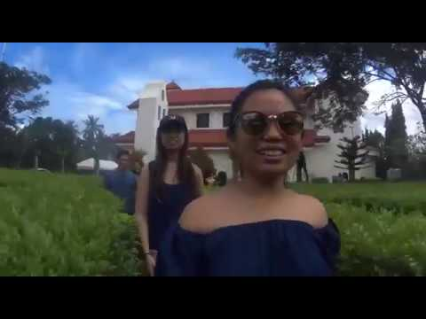 Cebu: Toledo, Aloguinsan & Pinamungajan