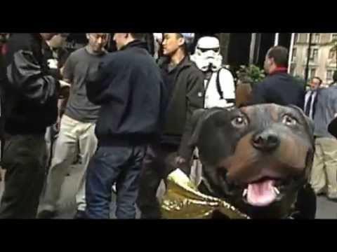 late night 'triumph at the star wars premier! - youtube