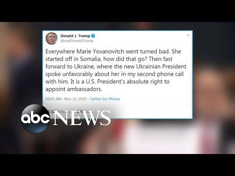 Trump responds to former US ambassador's testimony | ABC News