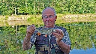 Поплавочная удочка. Рыбалка в проводку на течении.