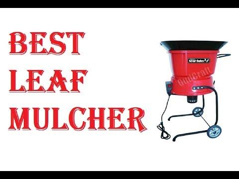 Best Leaf Mulcher 2019