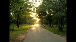 Ekhane Sokal nam dhore dake - Mousumi Bhowmik