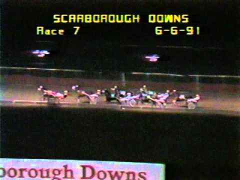 """""""Harness Racing"""" """"Scarborough Downs"""" accident wreck Standardbred"""