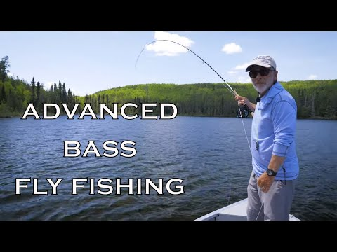 Advanced Bass Fly Fishing