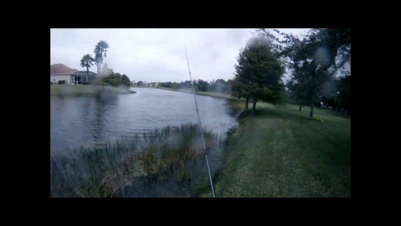 Largemouth bass fishing bass fishing in the rain in for Bass fishing in the rain
