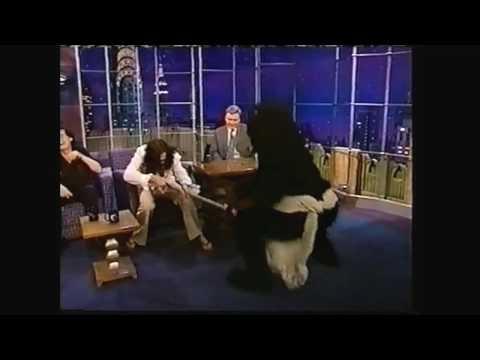 Masturbating Bear attacks Jimmy Page & Chris RobinsonBlack Crows