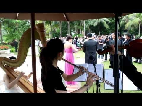 主婚人 - Harp, Flute & Violin Trio