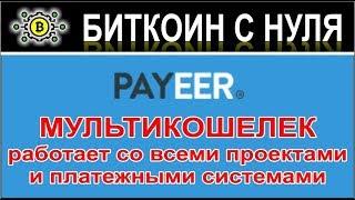 payEER - как создать кошелек. Обзор мульти-кошелька PayEER. Кошелек для всего!