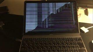 友達のパソコンにウイルスを送ってみた【友達発狂】 パソコン 検索動画 19