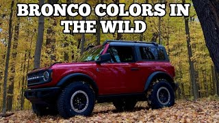 Ford Bronco spotted in various color combinations in the wild!