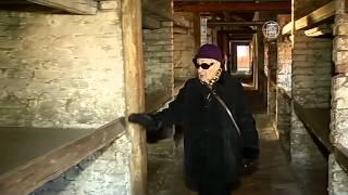 Бывшая узница «Освенцима» вспоминает ужасы лагеря (новости)