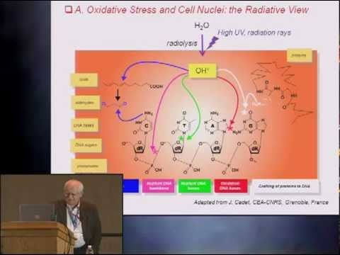 Pittcon 2012 - Measurement Tools for Reactive Oxygen and Nitrogen Species  - Abstract 1