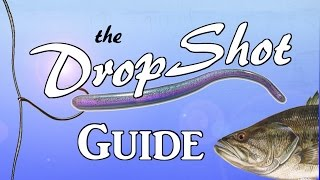 DROPSHOT Guide - The Most Effective Rig in Bass Fishing