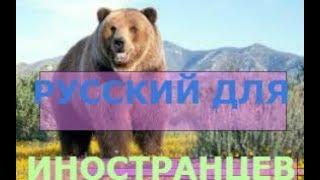 Презентация к урокам по изучению русского языка иностранцев