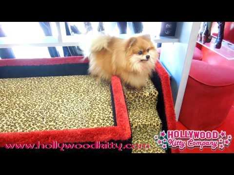 Doggy Duplex Cabana