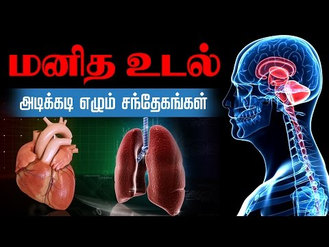 Lets Learn How The Human Body Works | Human Body System and Function in Tamil Part -2
