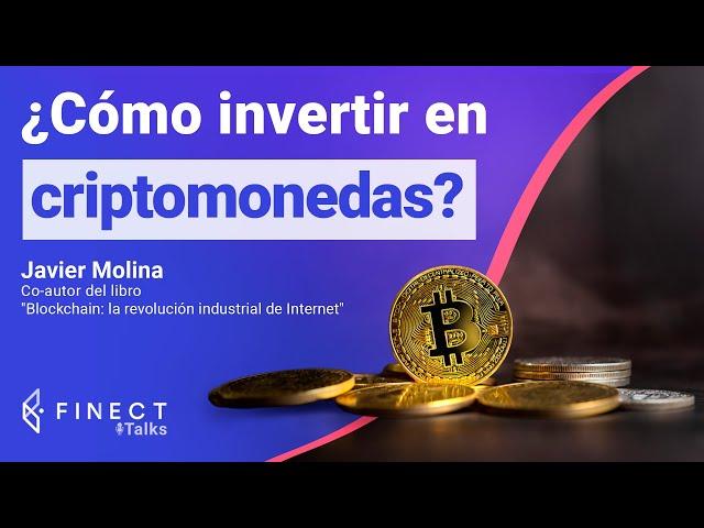 investir em ações para receber dividendos como invertir en bitcoin españa