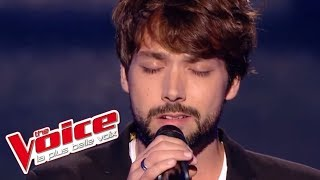 Moby - Natural Blues | Morgan Auger | The Voice France 2017 | Blind Audition