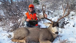 GIANT Public Land Colorado MULE DEER {Catch Clean Cook}