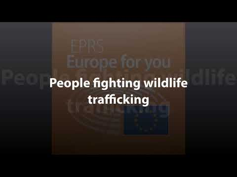 People fighting wildlife trafficking [What Europe does for you]
