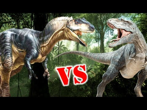 Allosaurus Vs Gorgosaurus Who Would Win?