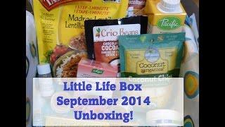 Little Life Box - September 2014 Unboxing! Thumbnail