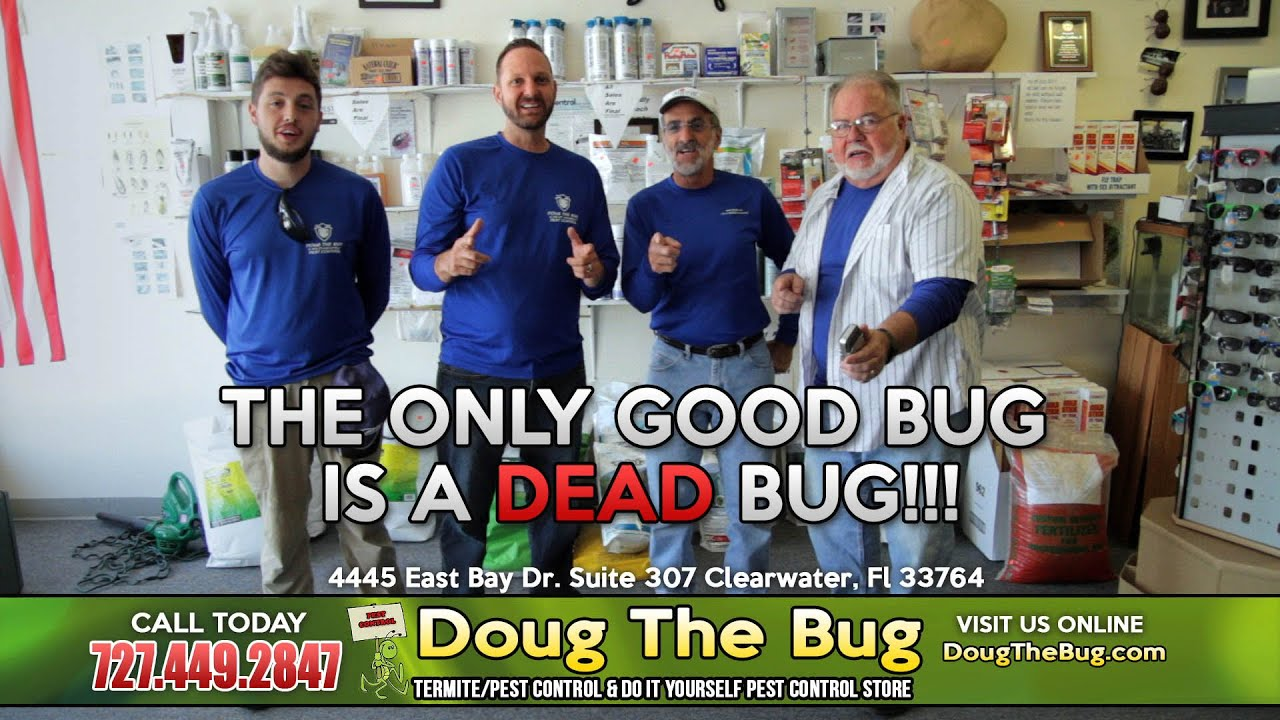 Doug the bug termite pest control do it yourself pest control doug the bug termite pest control do it yourself pest control store 7274492847 youtube solutioingenieria Image collections