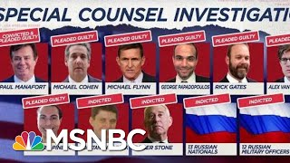Dem Senator Throws Down Gauntlet When Mueller Broke On Live TV | The Beat With Ari Melber | MSNBC