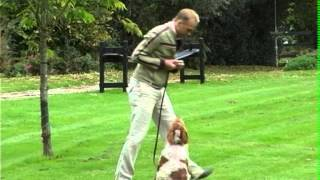 Guild Of Dog Trainers, England, Uk Teaching The  Recall Step 1 On A Lead